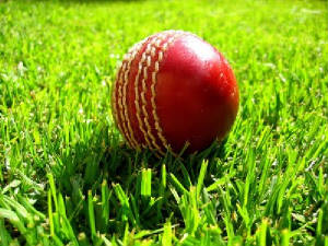 cricket_ball_on_grass.jpg